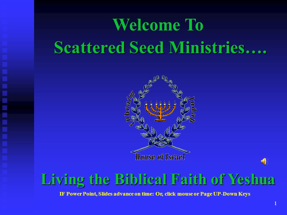 1 Scattered Seed Ministries….