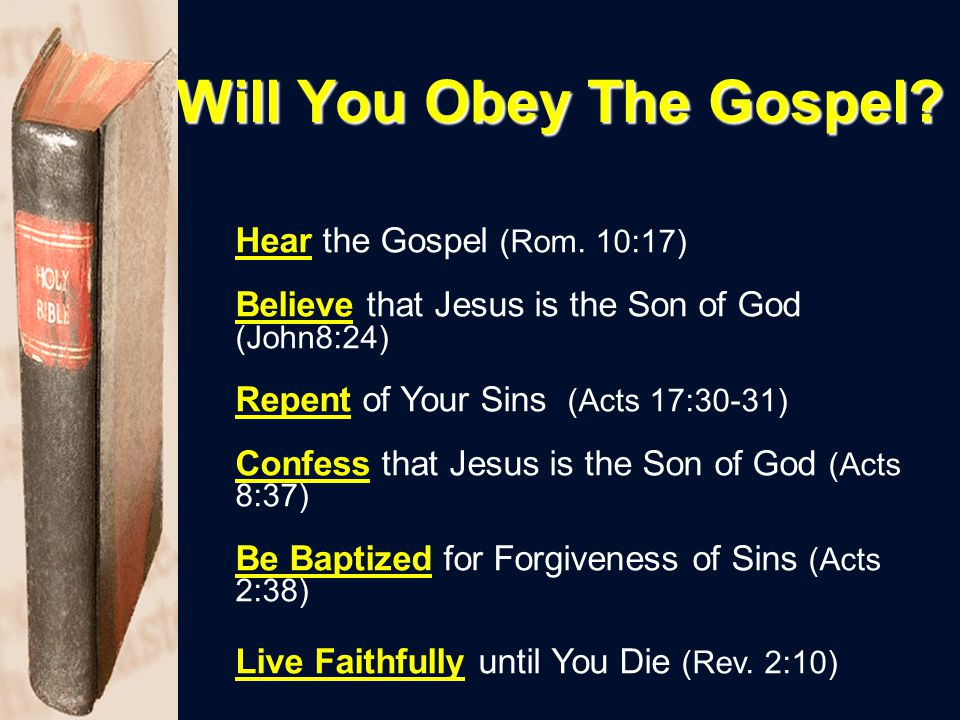 Will You Obey The Gospel.Hear the Gospel (Rom.