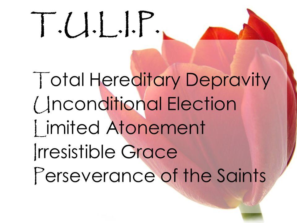 T.U.L.I.P.