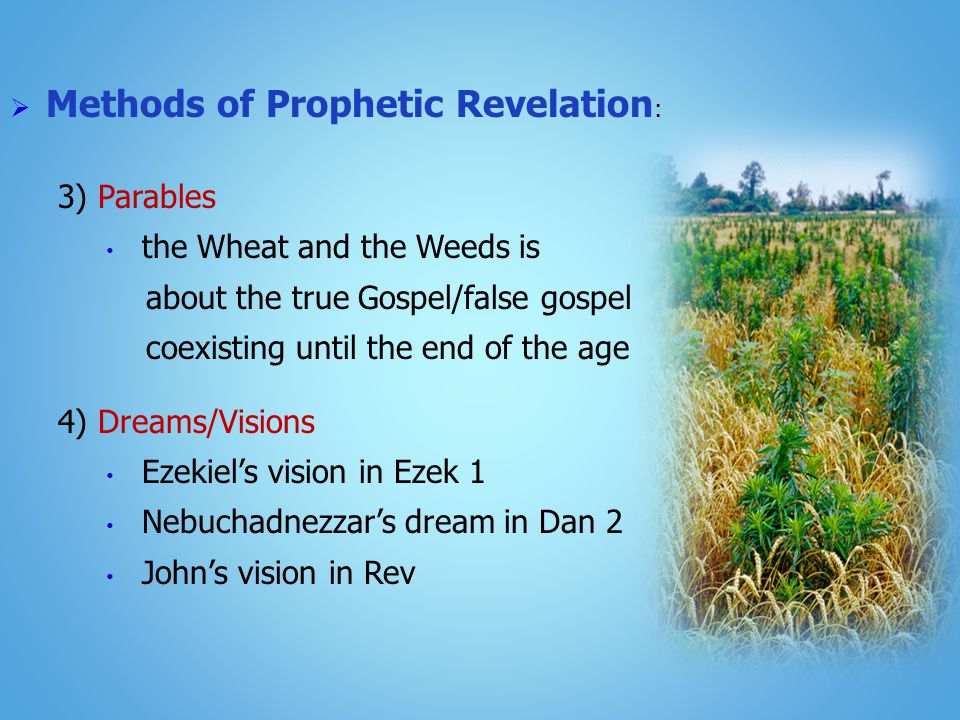  Methods of Prophetic Revelation : 3) Parables the Wheat and the Weeds is about the true Gospel/false gospel coexisting until the end of the age 4) Dreams/Visions Ezekiel's vision in Ezek 1 Nebuchadnezzar's dream in Dan 2 John's vision in Rev