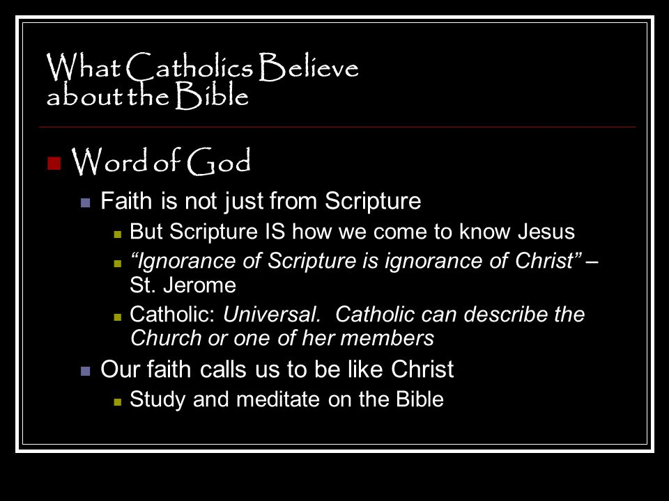 """What Catholics Believe about the Bible Word of God Faith is not just from Scripture But Scripture IS how we come to know Jesus """"Ignorance of Scripture"""