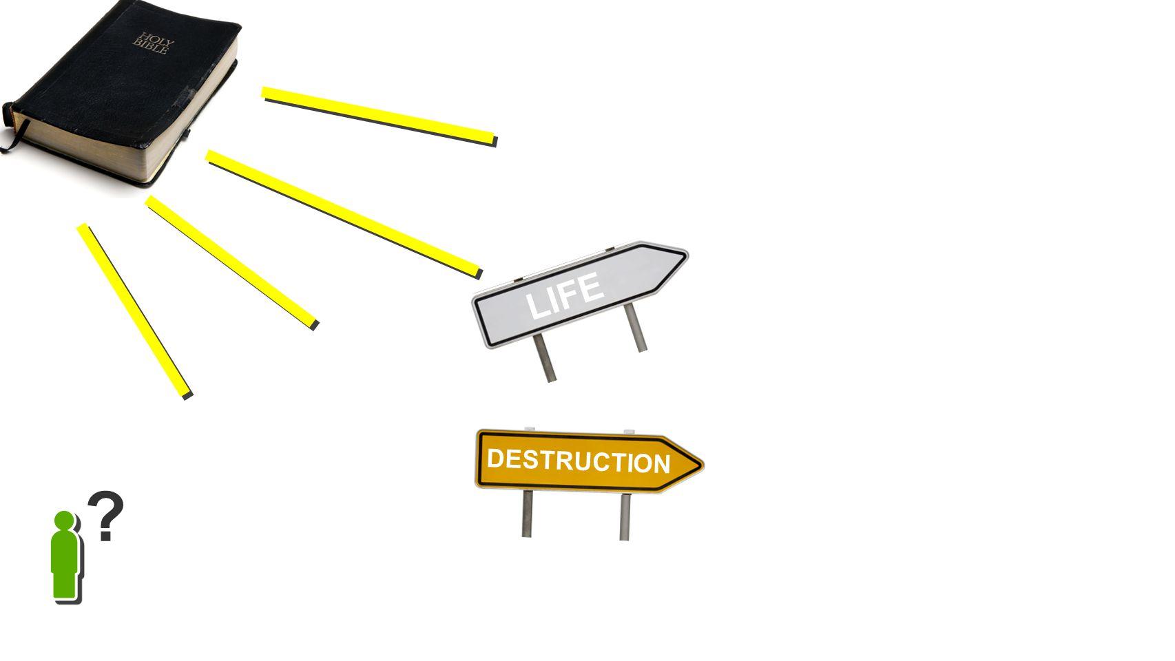 LIFE DESTRUCTION