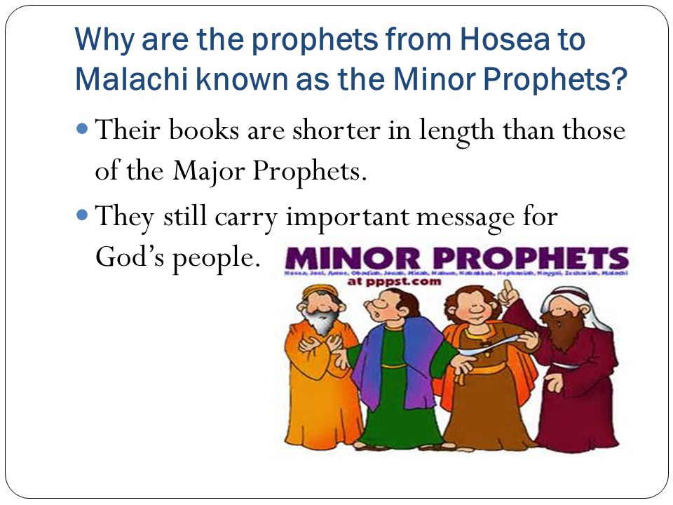Why are the prophets from Hosea to Malachi known as the Minor Prophets.
