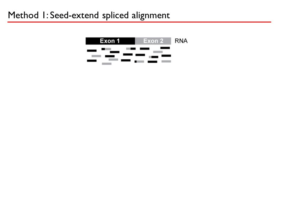 Method 1: Seed-extend spliced alignment