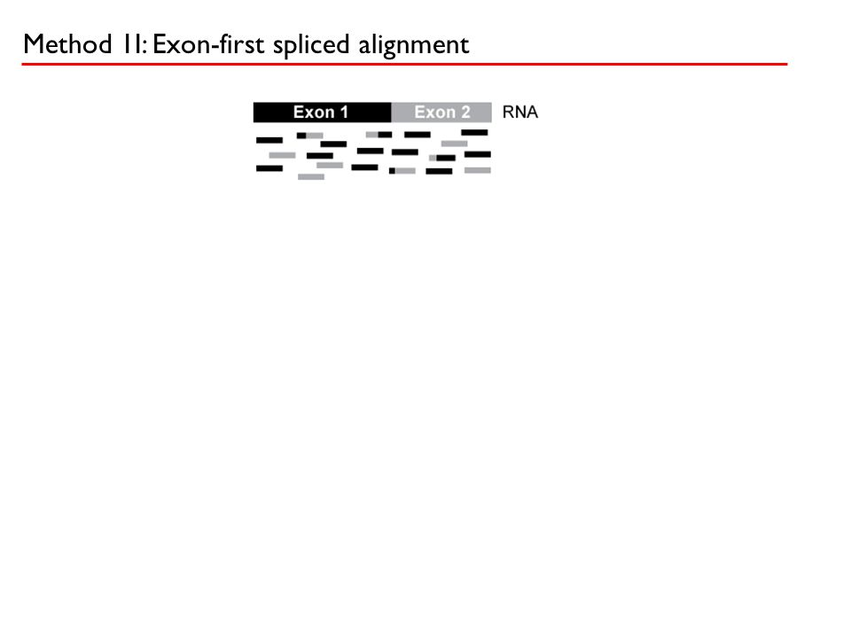 Method 1I: Exon-first spliced alignment