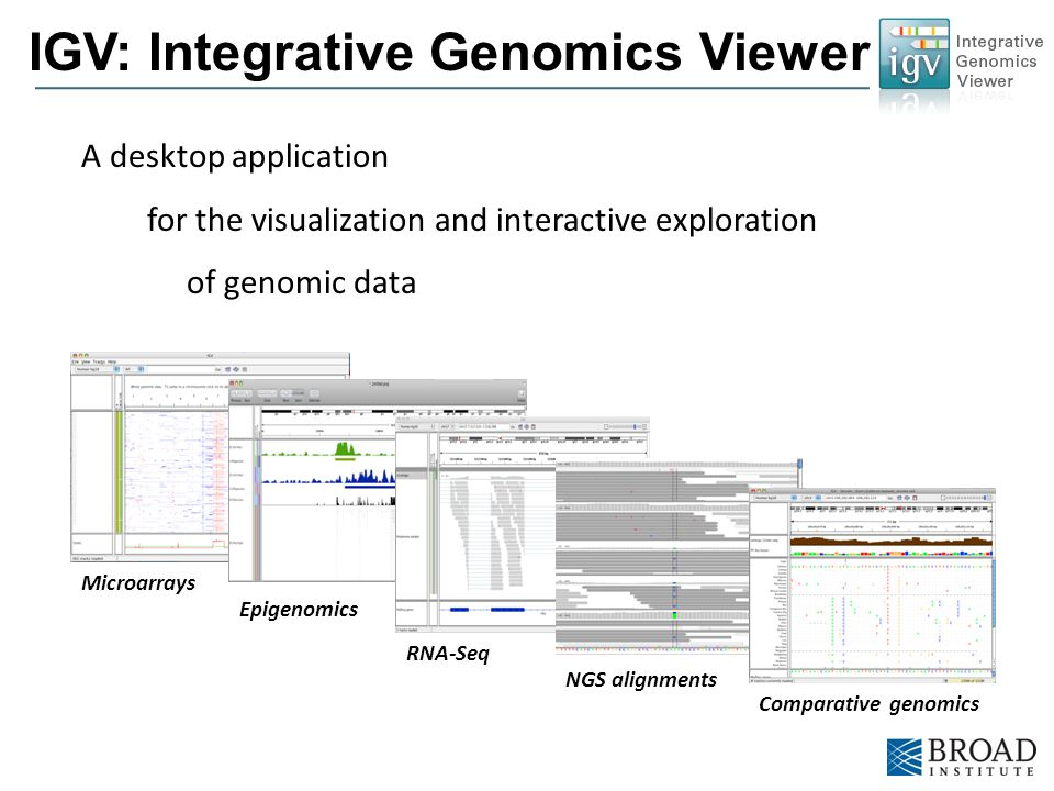 The Broad Institute of MIT and Harvard A desktop application for the visualization and interactive exploration of genomic data IGV: Integrative Genomi