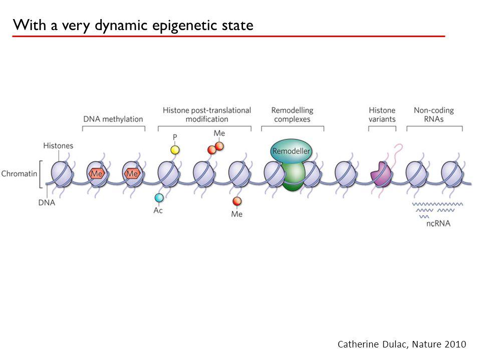 Chromatin domains demarcate interesting surprises in the transcriptome XIST ??? K4me3 K36me3