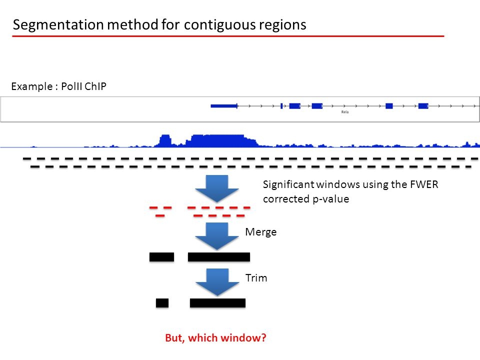 Example : PolII ChIP Significant windows using the FWER corrected p-value Merge Trim Segmentation method for contiguous regions But, which window?
