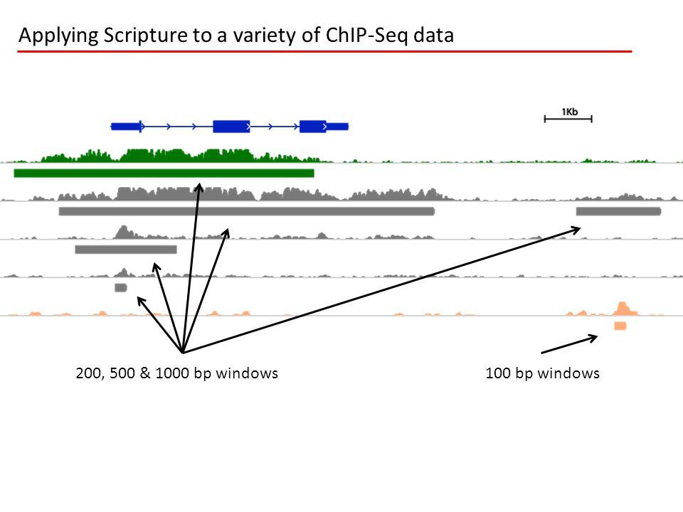 Applying Scripture to a variety of ChIP-Seq data 100 bp windows 200, 500 & 1000 bp windows