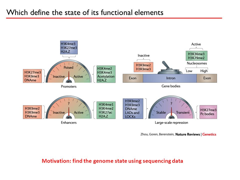 Which define the state of its functional elements Motivation: find the genome state using sequencing data