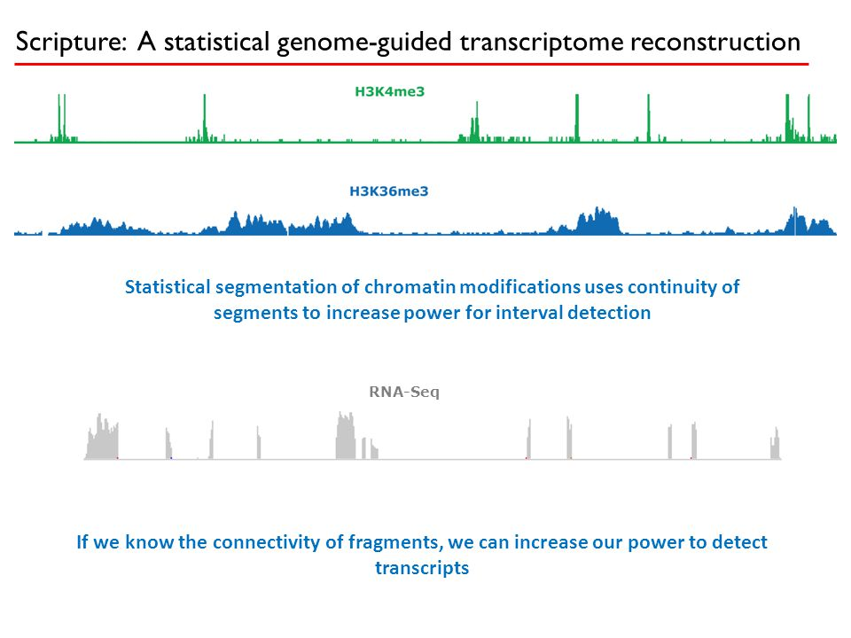 Scripture: A statistical genome-guided transcriptome reconstruction Statistical segmentation of chromatin modifications uses continuity of segments to
