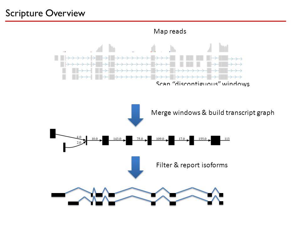"Merge windows & build transcript graph Filter & report isoforms Scripture Overview Map reads Scan ""discontiguous"" windows"