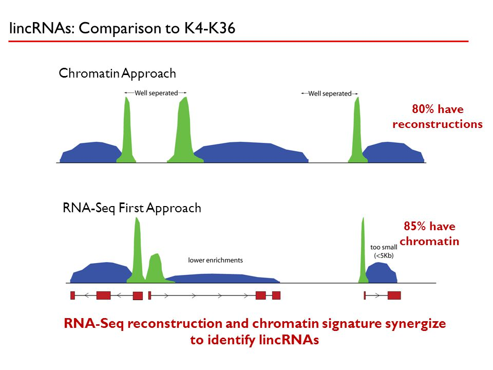 lincRNAs: Comparison to K4-K36 RNA-Seq reconstruction and chromatin signature synergize to identify lincRNAs Chromatin Approach RNA-Seq First Approach