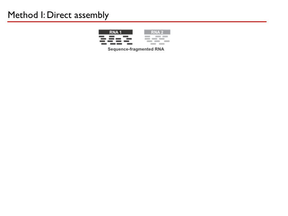 Method I: Direct assembly