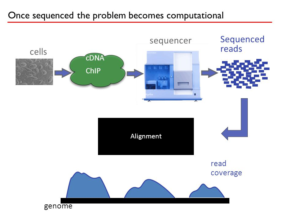 If we knew the origin of the reads we could compute each isoform's expression.