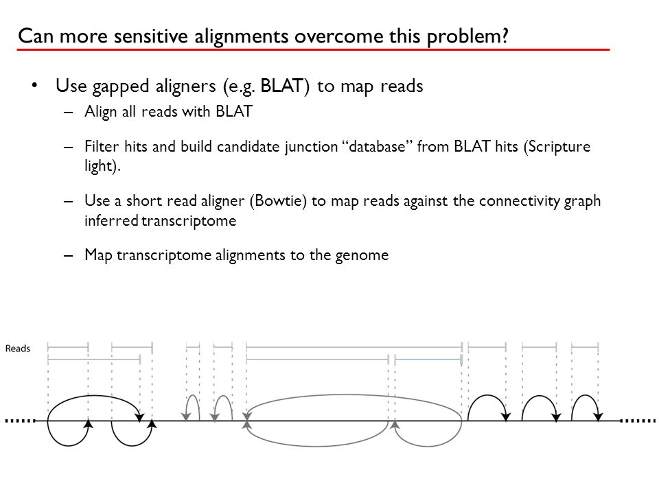 """Use gapped aligners (e.g. BLAT) to map reads – Align all reads with BLAT – Filter hits and build candidate junction """"database"""" from BLAT hits (Scriptu"""