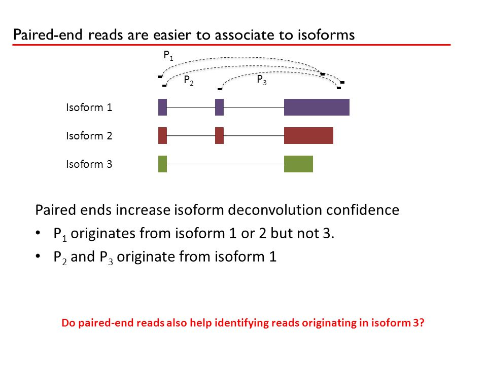 Paired-end reads are easier to associate to isoforms P1P1 P2P2 P3P3 Isoform 1 Isoform 2 Isoform 3 Paired ends increase isoform deconvolution confidenc