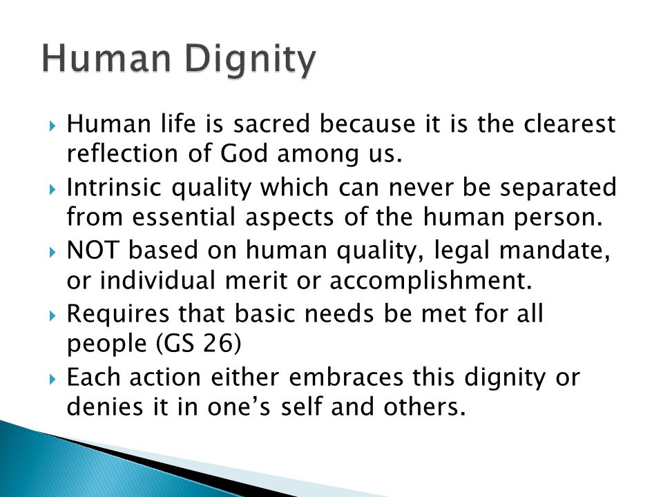  Human life is sacred because it is the clearest reflection of God among us.