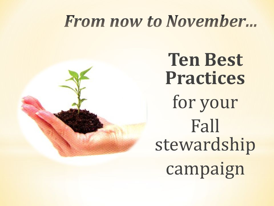 Ten Best Practices for your Fall stewardship campaign