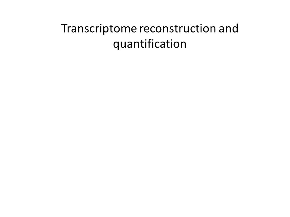 Transcriptome reconstruction and quantification