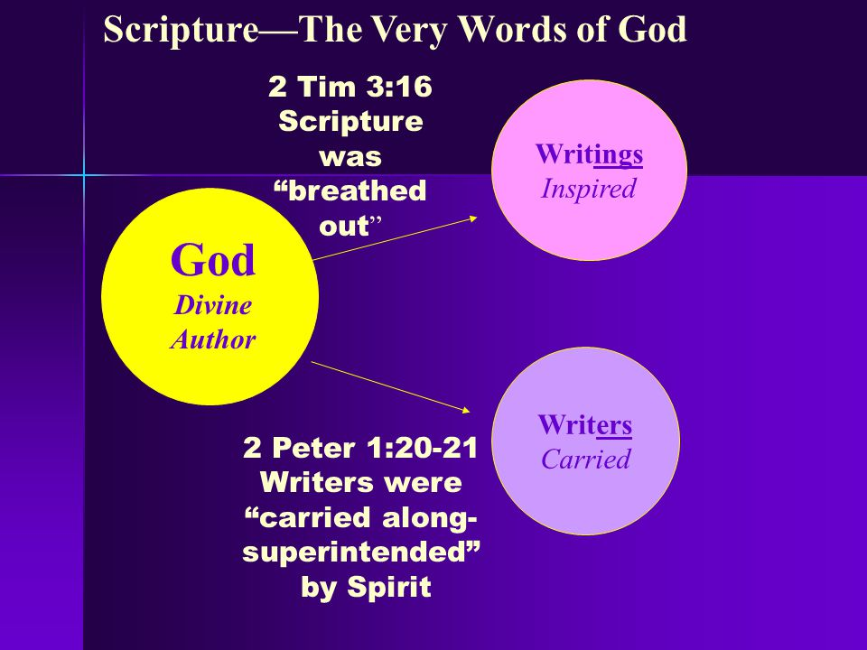 Basis for Plenary Verbal Inspiration 2 T imothy 3:16 All Scripture is breathed out by God and profitable for teaching, for reproof, for correction, and for training in righteousness.
