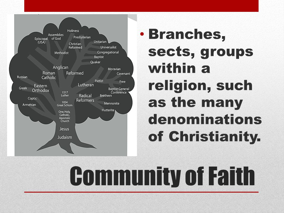 Community of Faith Branches, sects, groups within a religion, such as the many denominations of Christianity.
