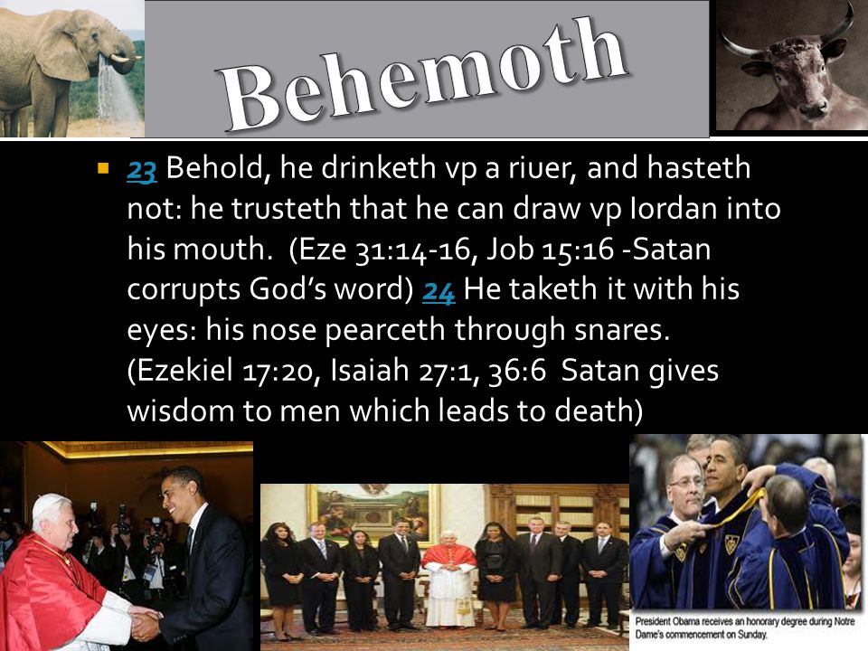  23 Behold, he drinketh vp a riuer, and hasteth not: he trusteth that he can draw vp Iordan into his mouth.