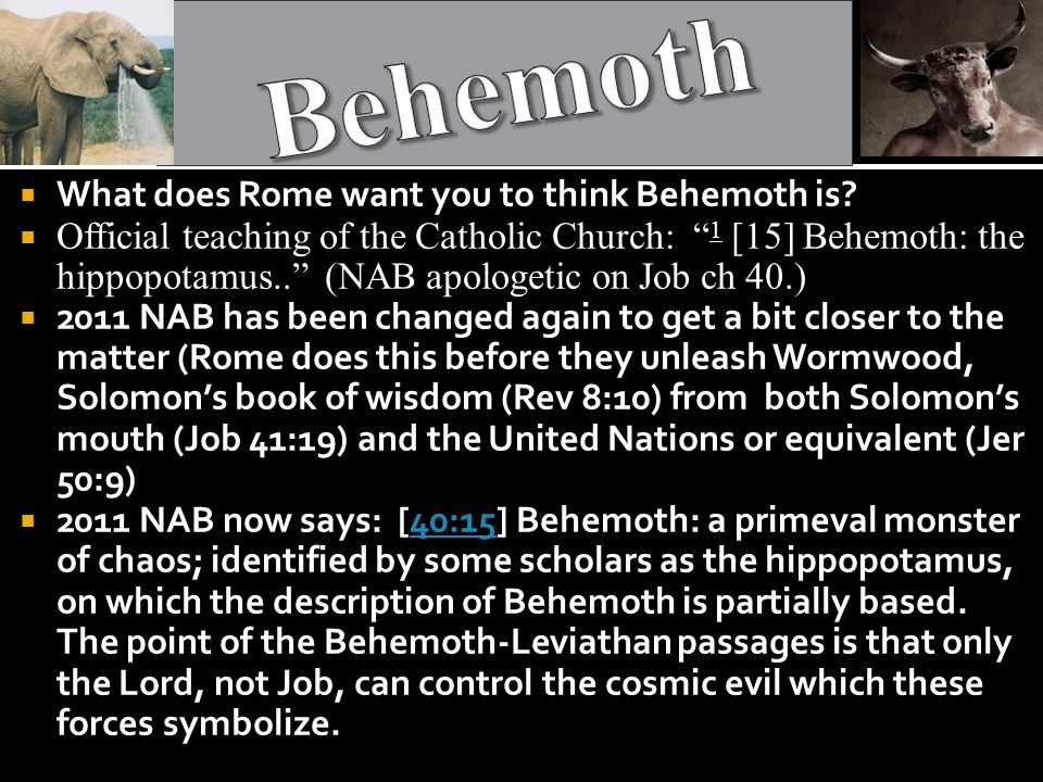  What does Rome want you to think Behemoth is.