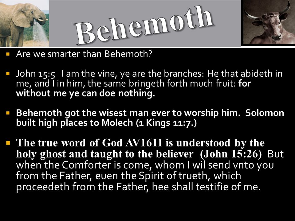  Are we smarter than Behemoth.