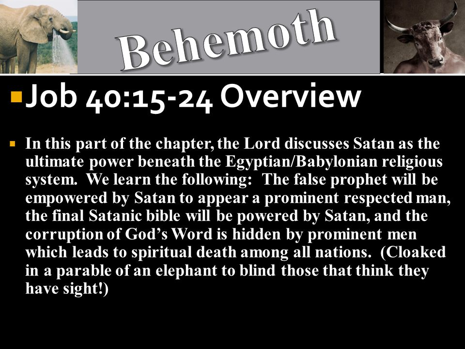  Job 40:15-24 Overview  In this part of the chapter, the Lord discusses Satan as the ultimate power beneath the Egyptian/Babylonian religious system.