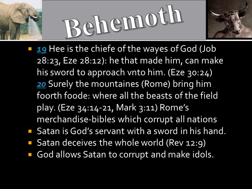  19 Hee is the chiefe of the wayes of God (Job 28:23, Eze 28:12): he that made him, can make his sword to approach vnto him.