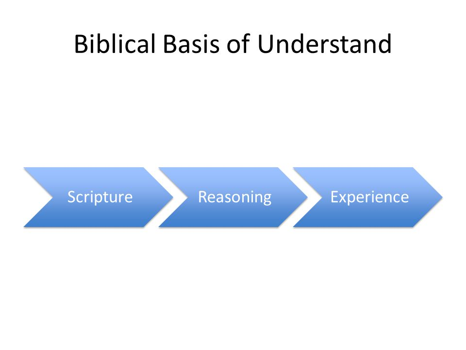 Biblical Basis of Understand ScriptureReasoningExperience
