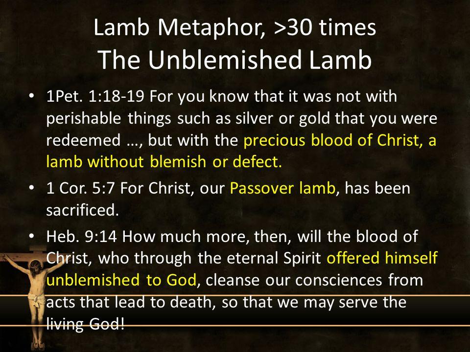 Lamb Metaphor, >30 times The Unblemished Lamb 1Pet.