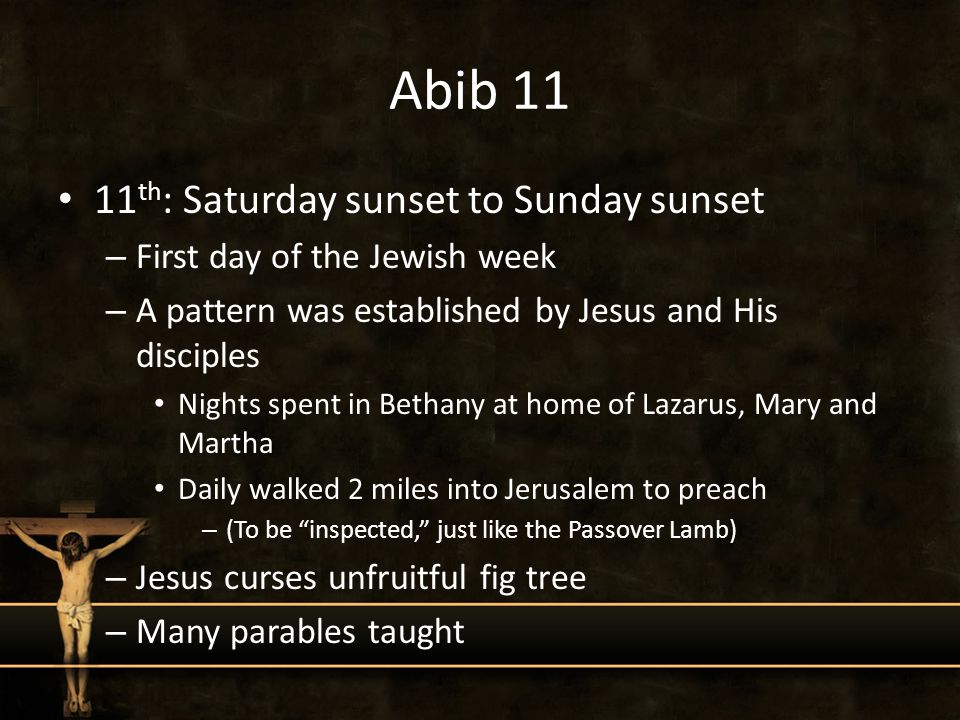 Abib 11 11 th : Saturday sunset to Sunday sunset – First day of the Jewish week – A pattern was established by Jesus and His disciples Nights spent in Bethany at home of Lazarus, Mary and Martha Daily walked 2 miles into Jerusalem to preach – (To be inspected, just like the Passover Lamb) – Jesus curses unfruitful fig tree – Many parables taught