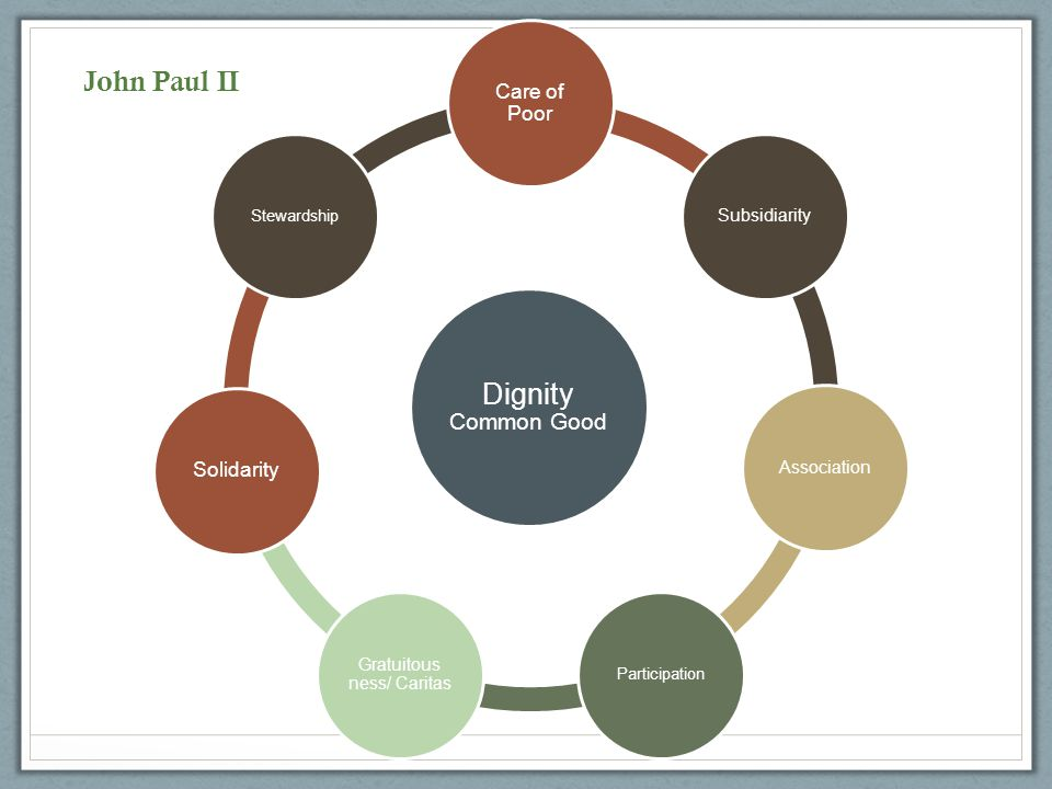 Stewardship Participation Association Subsidiarity Care for the Poor Solidarity Dignity/Com mon Good Gratuitousness /Caritas Benedict XVI