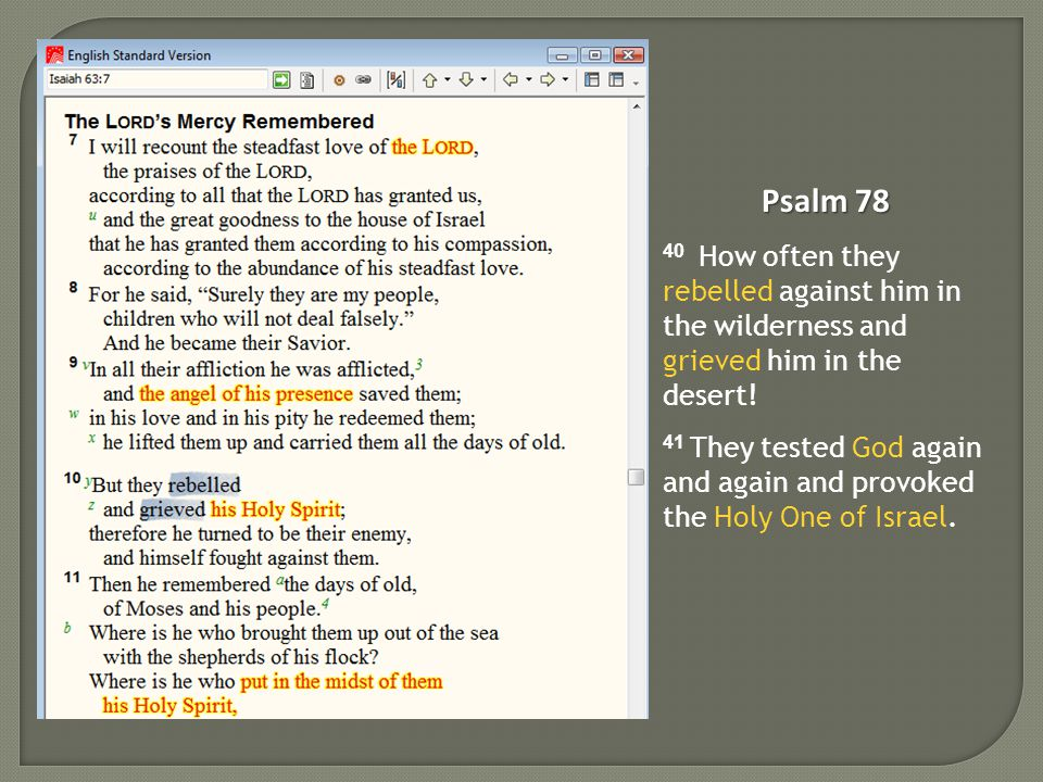 Psalm 78 40 How often they rebelled against him in the wilderness and grieved him in the desert.