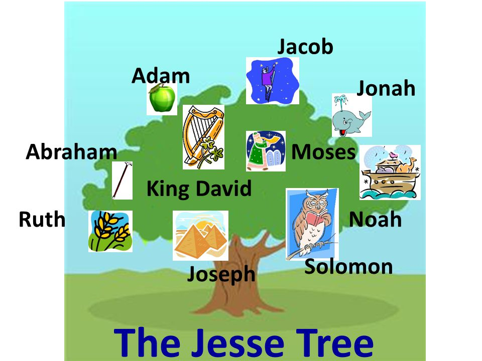 Adam Jacob Jonah AbrahamMoses Solomon Joseph Ruth King David Noah The Jesse Tree