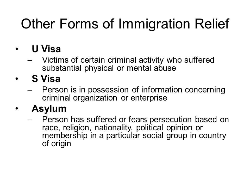 Other Forms of Immigration Relief U Visa –Victims of certain criminal activity who suffered substantial physical or mental abuse S Visa –Person is in possession of information concerning criminal organization or enterprise Asylum –Person has suffered or fears persecution based on race, religion, nationality, political opinion or membership in a particular social group in country of origin