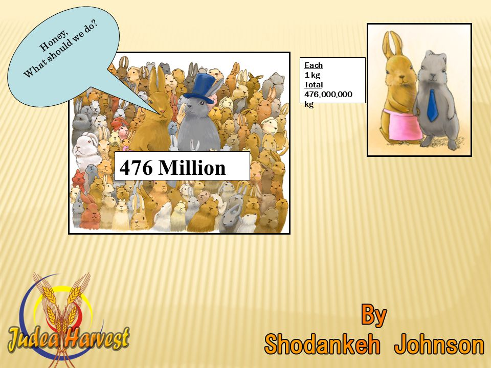 Honey, What should we do 476 Million Each 1 kg Total 476,000,000 kg