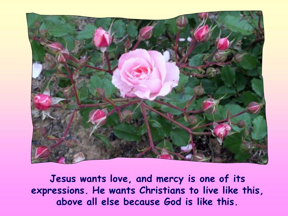 «... I desire mercy, not sacrifice»