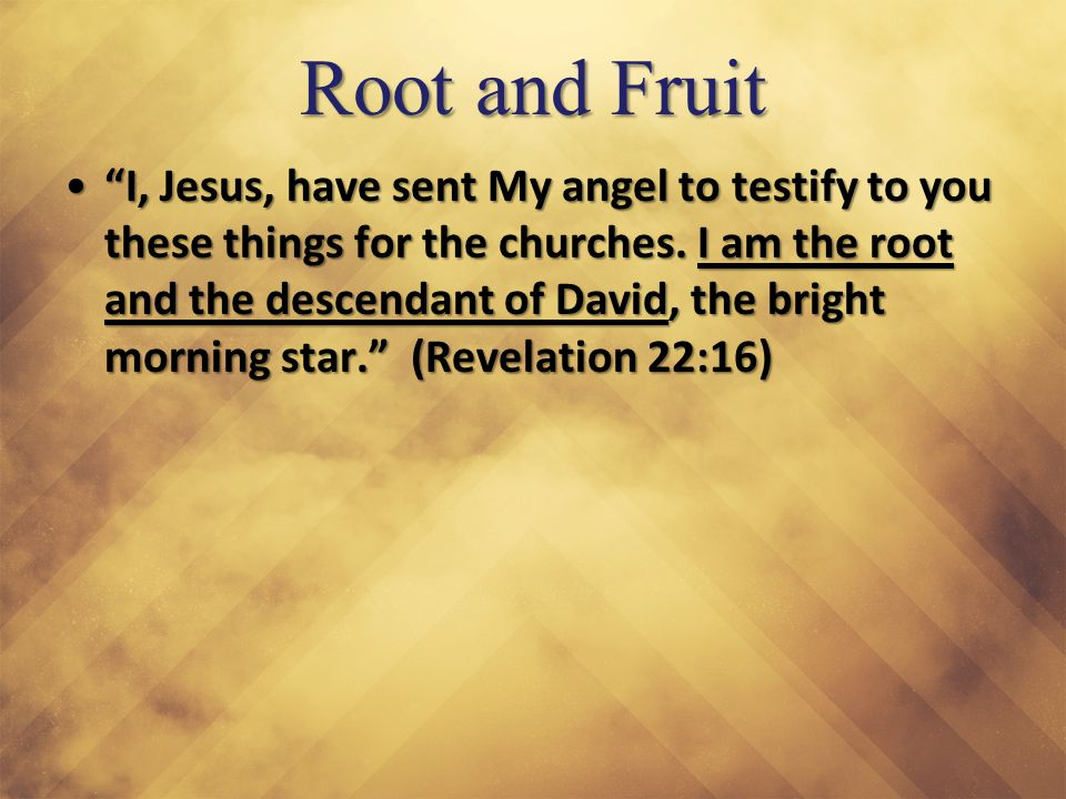 "Root and Fruit ""I, Jesus, have sent My angel to testify to you these things for the churches. I am the root and the descendant of David, the bright mo"