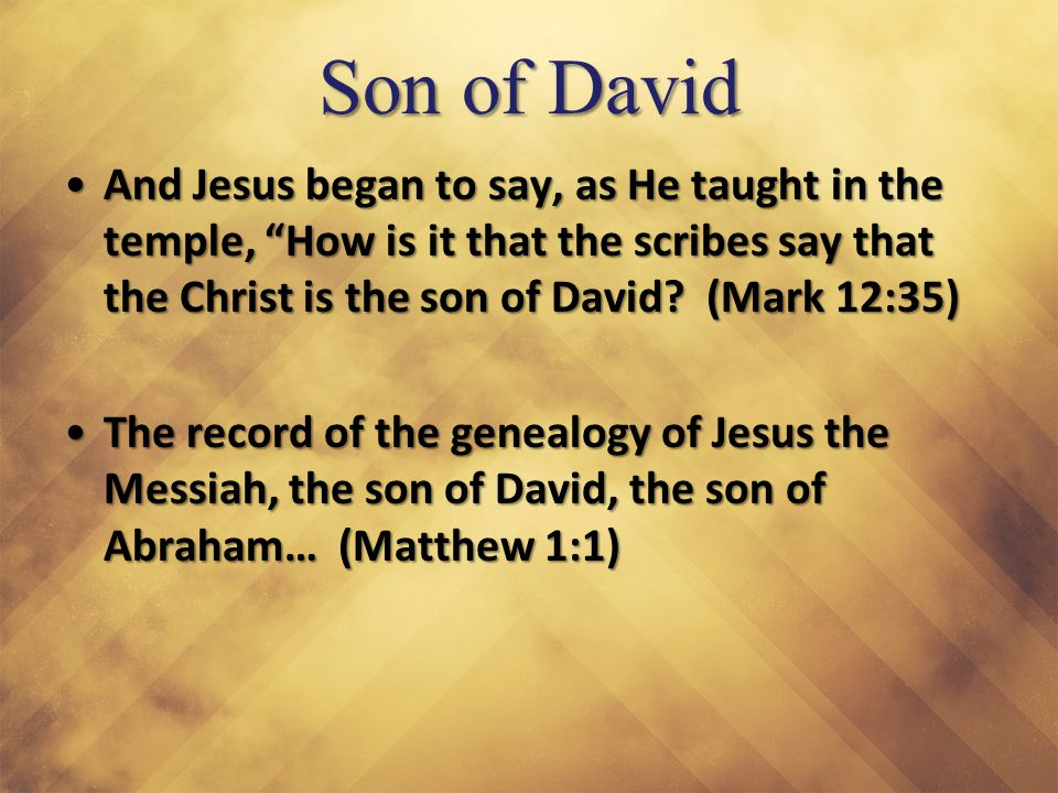 "Son of David And Jesus began to say, as He taught in the temple, ""How is it that the scribes say that the Christ is the son of David? (Mark 12:35)And"
