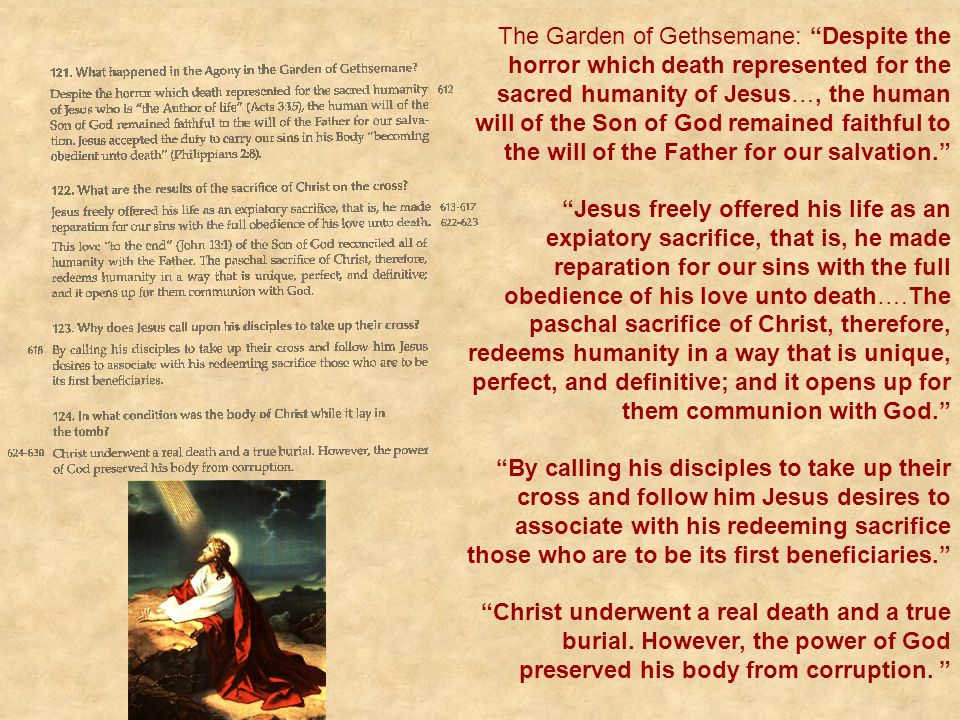 """The Garden of Gethsemane: """"Despite the horror which death represented for the sacred humanity of Jesus…, the human will of the Son of God remained fai"""