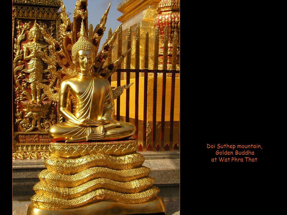 Doi Suthep mountain, Golden stupa and umbrella at Wat Phra That