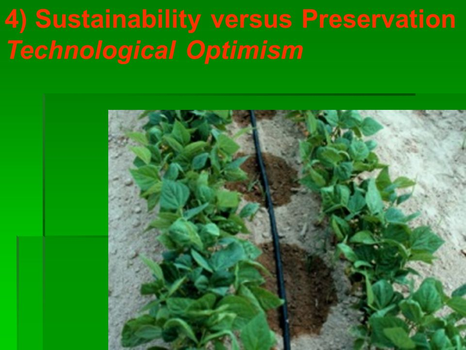 4) Sustainability versus Preservation Technological Optimism