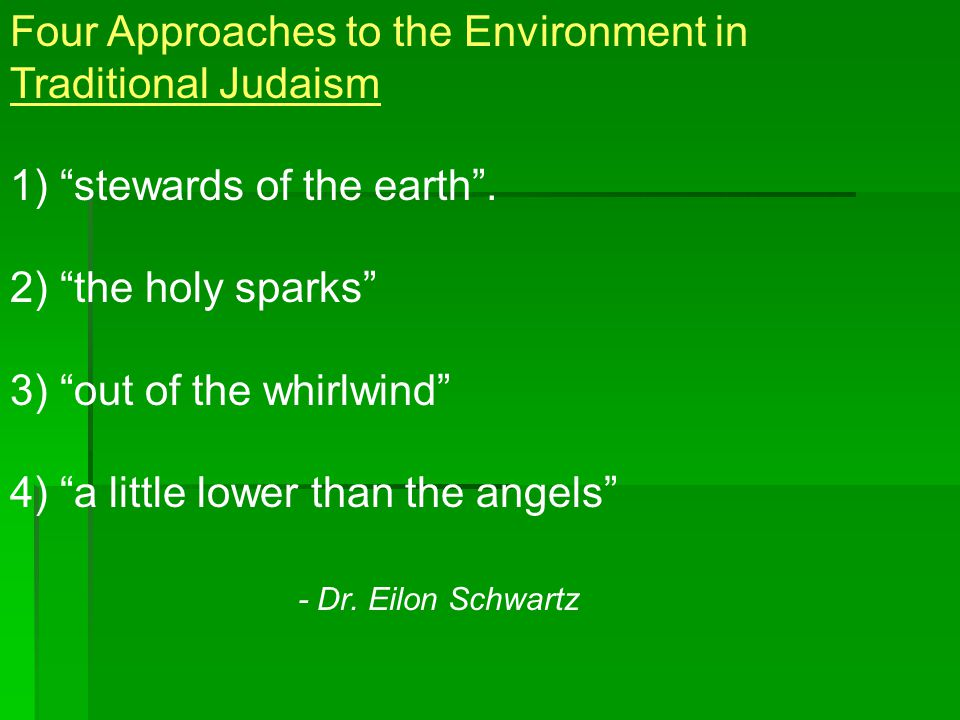 Four Approaches to the Environment in Traditional Judaism 1) stewards of the earth .