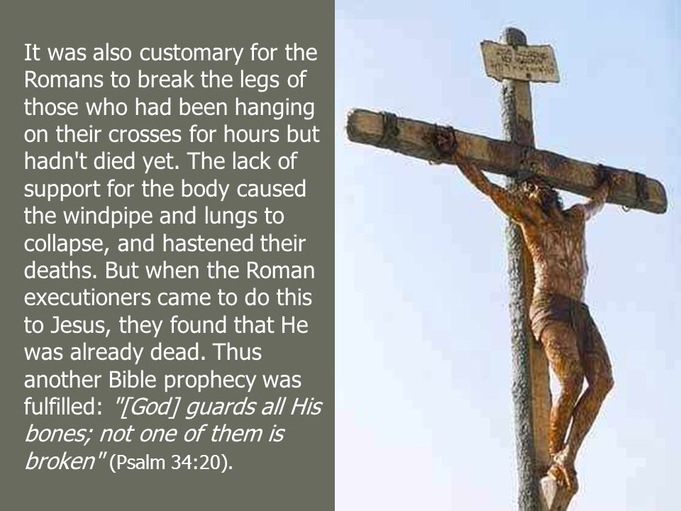 About 1,000 years before crucifixion became a usual means of execution in the Roman Empire, King David wrote of the Messiah: