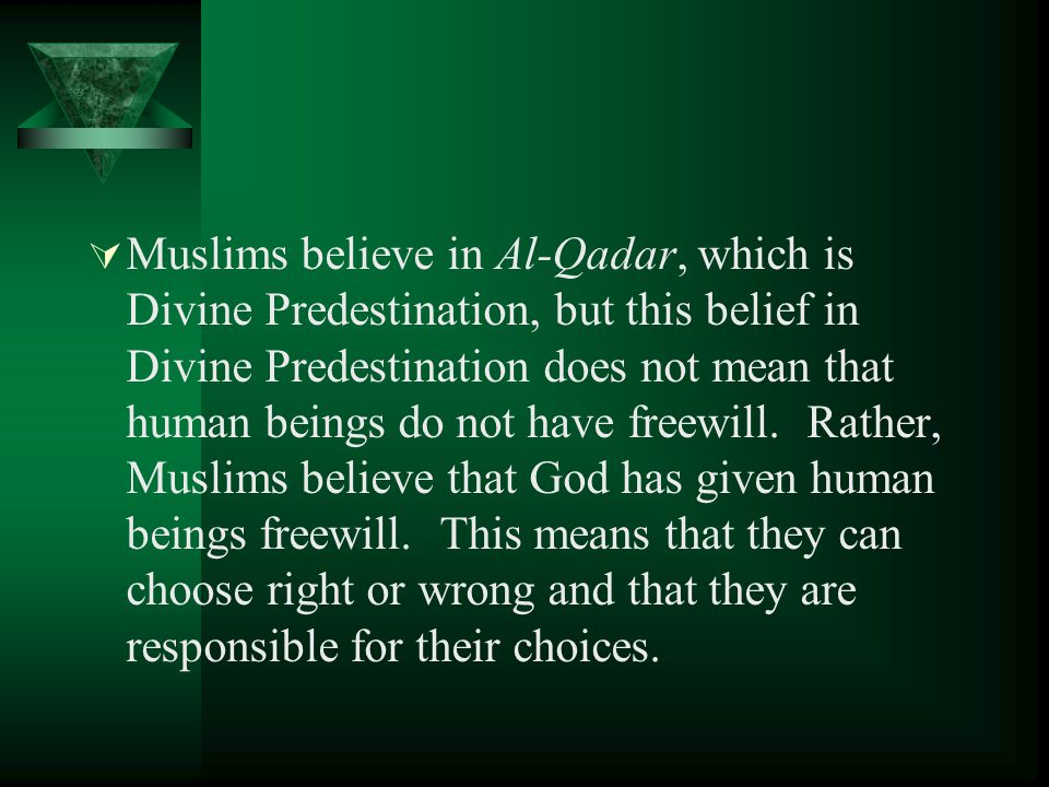  Muslims believe in Al-Qadar, which is Divine Predestination, but this belief in Divine Predestination does not mean that human beings do not have freewill.