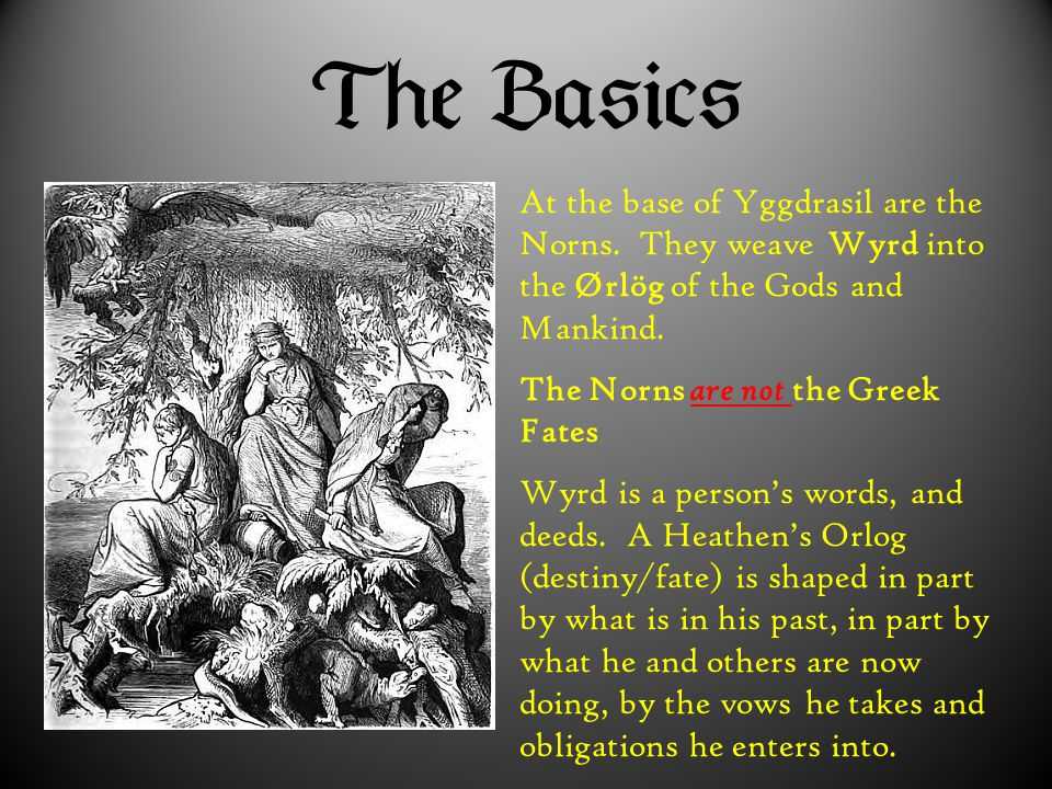  At the base of Yggdrasil are the Norns. They weave Wyrd into the Ørlög of the Gods and Mankind. The Norns are not the Greek Fates Wyrd is a