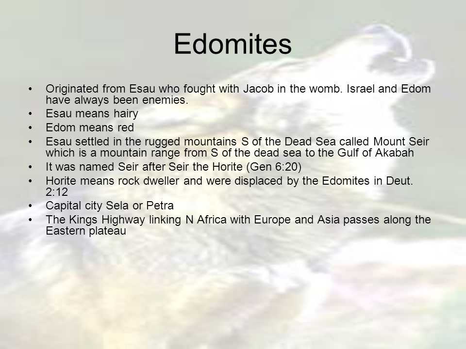 Edomites Originated from Esau who fought with Jacob in the womb.